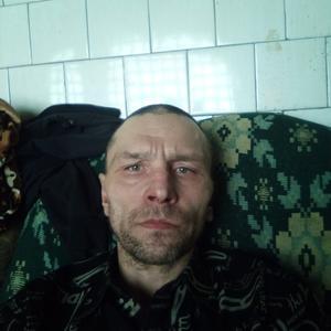Александр, 41 год, Ковдор