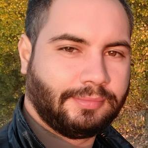 Artem Nikitin, 32 года, Ульяновск