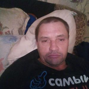 Николай, 41 год, Тихвин