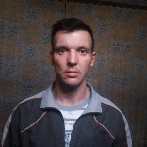 Сергей Сокол, 36 лет, Гусь-Хрустальный