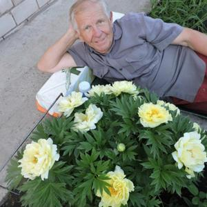 Алексей, 62 года, Владимир