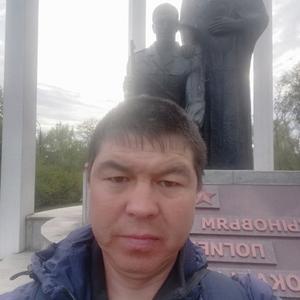Илья, 41 год, Новосибирск