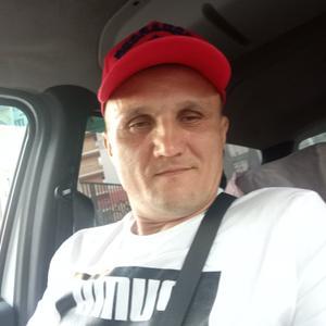 Ринат, 45 лет, Казань