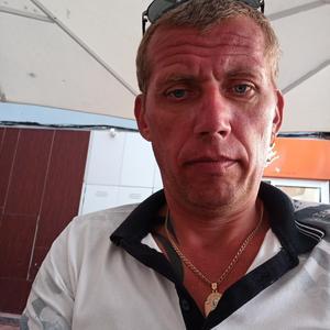 Андрей, 41 год, Калининград