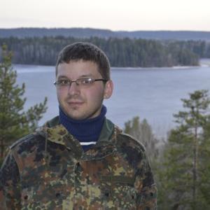 Александр, 33 года, Череповец