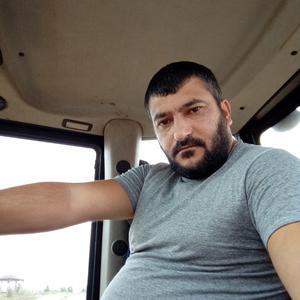 Ренад, 33 года, Можайск