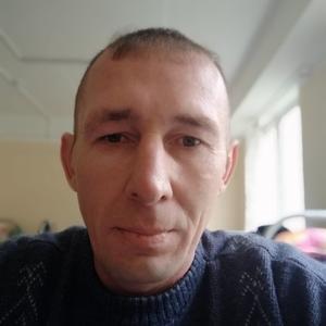 Сергей Дмитреев, 38 лет, Бежецк