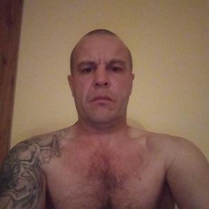 Алексей, 38 лет, Хабаровск