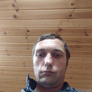 Миша, 41 год, Можайск