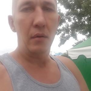 Саша, 38 лет, Абакан