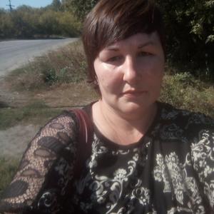Светлана, 43 года, Бийск