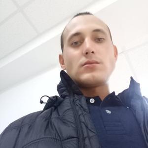 Aleksander, 32 года, Зеленогорск