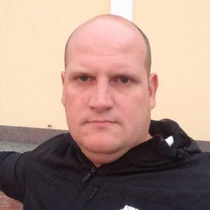 Алексей, 38 лет, Волхов