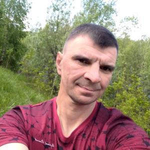 Андрей, 43 года, Мегион