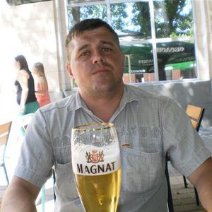 Дмитрий, 44 года, Губаха