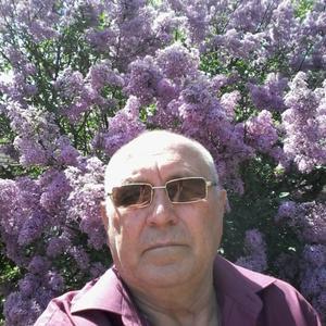 Сергей, 73 года, Ставрополь