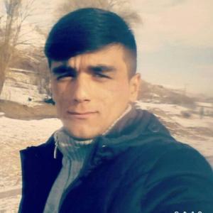 Парвиз Халимов, 23 года, Краснодар