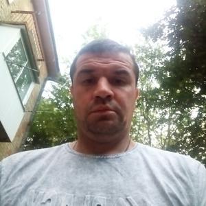 Максим, 36 лет, Шуя