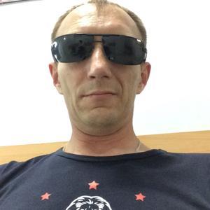 Роман, 41 год, Щекино