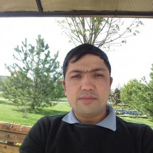 Дима, 33 года, Иркутск