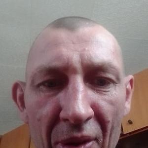 Вячеслав Тарасов, 39 лет, Белебей