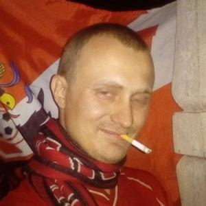Андрей, 31 год, Зарайск