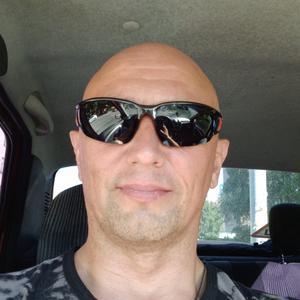 Владимир, 42 года, Выборг
