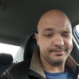 Александр, 35 лет, Ивантеевка