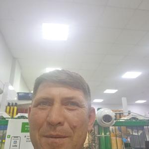 Николай, 44 года, Краснодар
